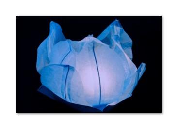 Lanterne Galleggianti Ninfea per la Piscina