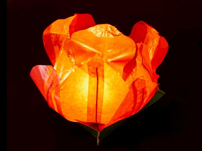 kleine drijflantaarn in de vorm van een waterlelie, lotusbloem geschikt voor vijver of zwembad, op het grasveld of tafel, eenvoudig in gebruik, vouwen, het bijgeleverde waxinelichtje er in leggen en laten drijven, leuk voor een avond in de tuin of gedurende een feest, kleur oranje