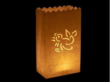 sacchetto luminoso per candele da usare al interno o in giardino da illuminare, carta ignifuga e biodegradabile, per una festa o una serata in giardino, con l'ocello, da mettere per terra o in tavola, senza scritte, facile da usare.