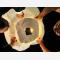 Lanterna Volante Bianca matrimonio: Le nostre lanterne volanti pronte per l'uso, facile da usare, per un anniversario, un matrimonio, una laurea o qualsiasi altra festa, certificata, ignifuga e biodegradabile